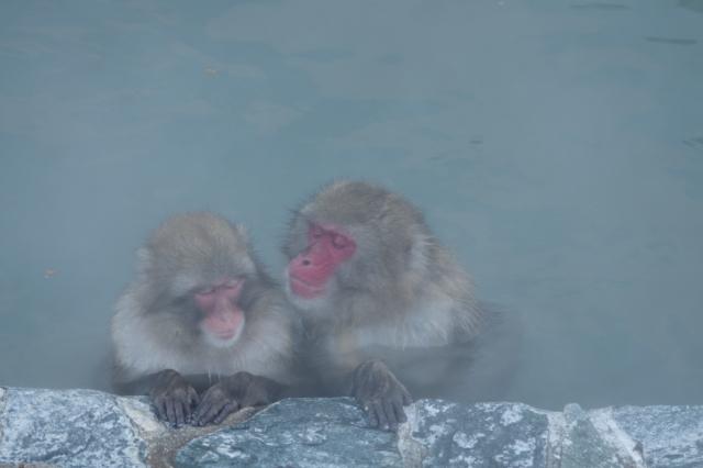 寒い季節おお風呂